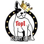 Top1 Kennel Club